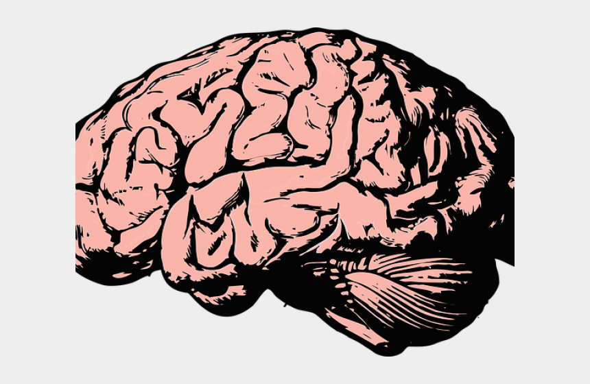 anxiety clipart, Cartoons - Drawn Brain Anxiety Brain - Brains Without Background