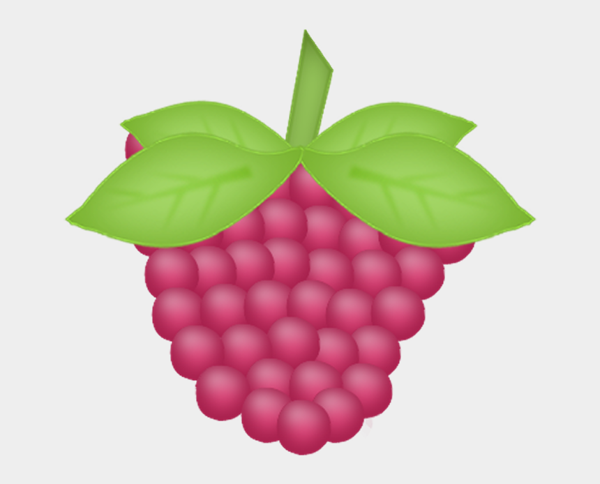 blackberries clipart, Cartoons - FᎧᖇᏰᎥᗪᗪᏋղ ƑᖇᘎᎥե - Grape