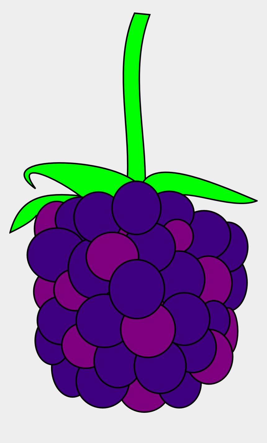 blackberries clipart, Cartoons - Blackberry Clipart Berry Plant - Black Berry Clipart