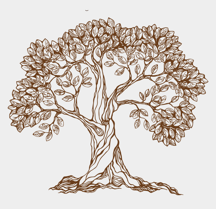 apple tree clipart black and white, Cartoons - Apple Tree Png - Hand Draw Tree