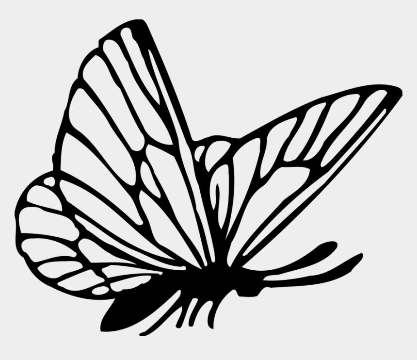 Black and White Butterfly Clip Art
