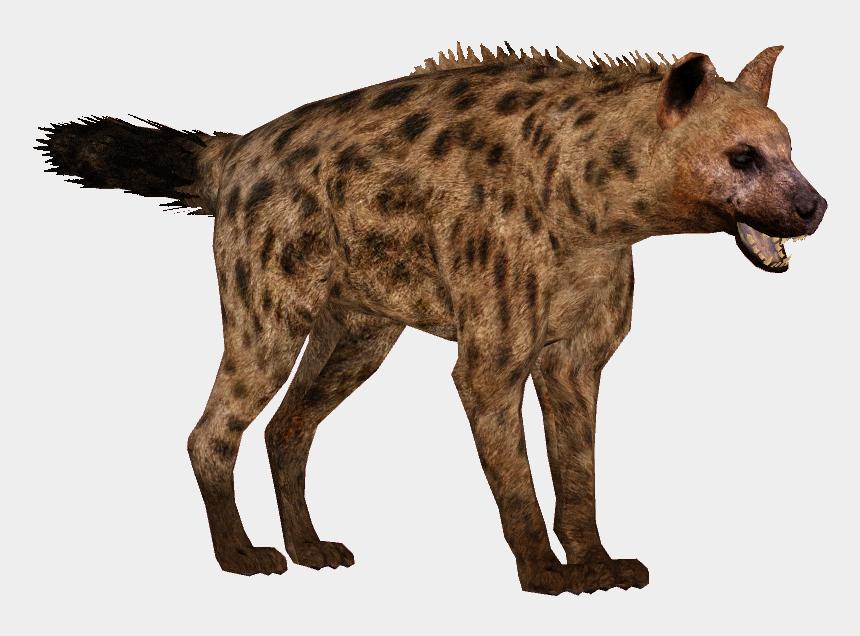 hyenas clipart, Cartoons - Download Hyena Png Transparent Images Transparent Backgrounds - Hyena Transparent Background