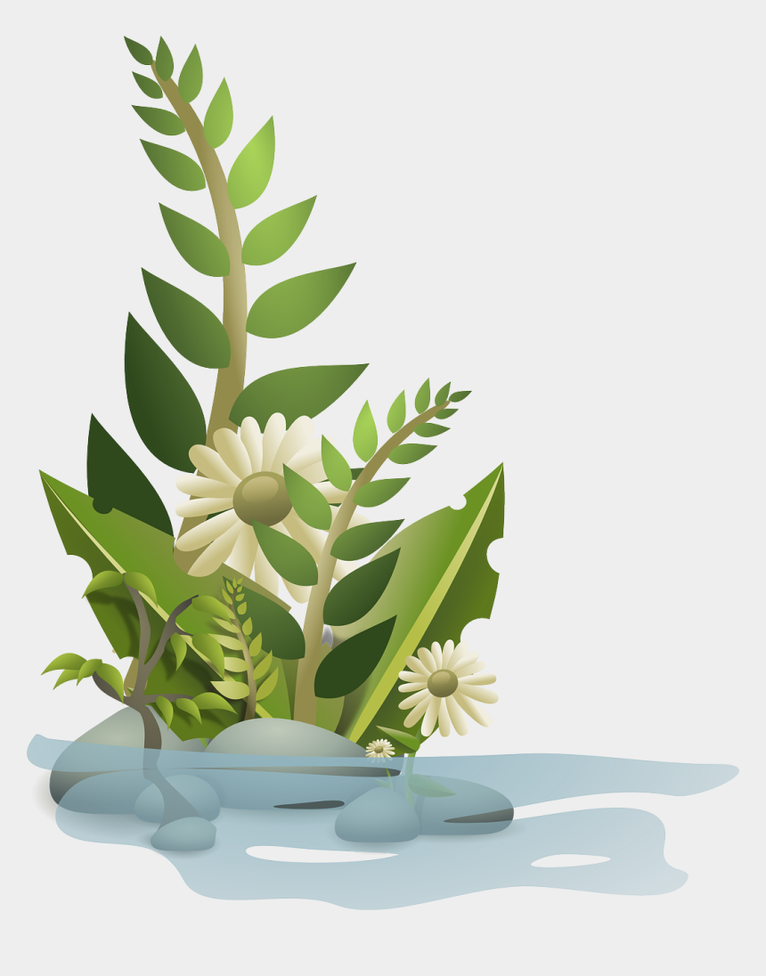 growing clipart, Cartoons - Plant Growing Png - Plants Clipart Png