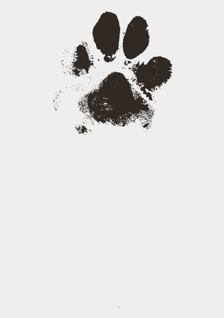 dog paw print clipart, Cartoons - Free Photos Print Search Download Needpix Com - Dog Paw Print Real