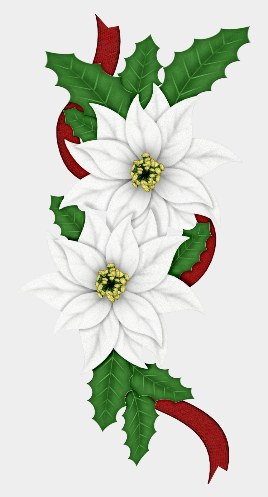 poinsettias clipart, Cartoons - Edelweiss Png - Christmas Day