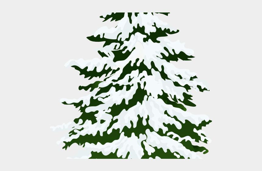 clipart pine tree, Cartoons - Pine Tree Clipart Fir Tree - Snowy Trees Transparent Background