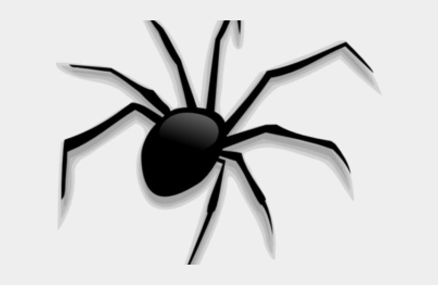 spider web clip art, Cartoons - Creepy Clipart Real Spider - Halloween Spider Clipart Png