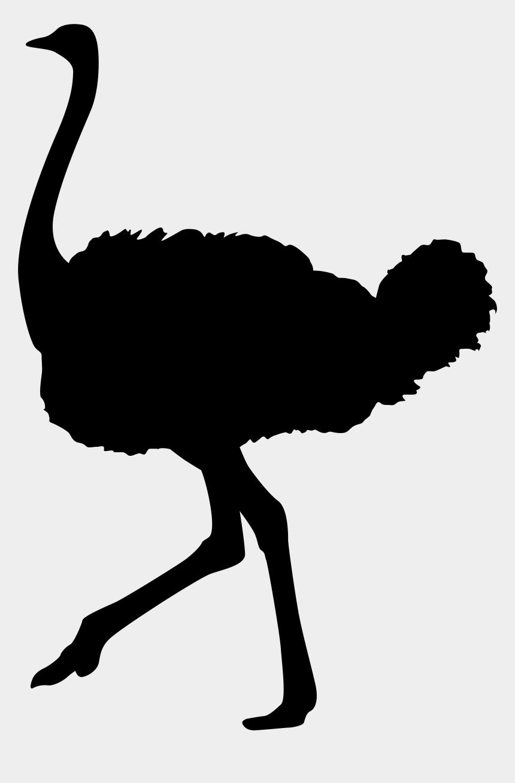 shadow clipart, Cartoons - Ostrich Clipart Silhouette - Avestruz Silueta Png