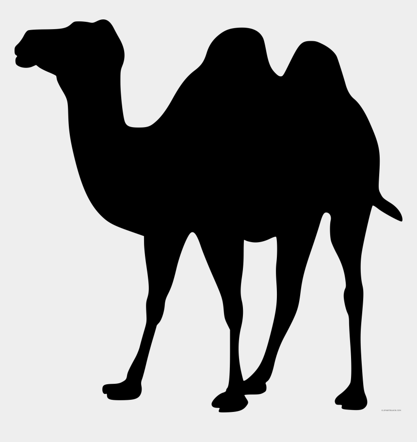shadow clipart, Cartoons - Drawing Camels Shadow - Clipart Camel