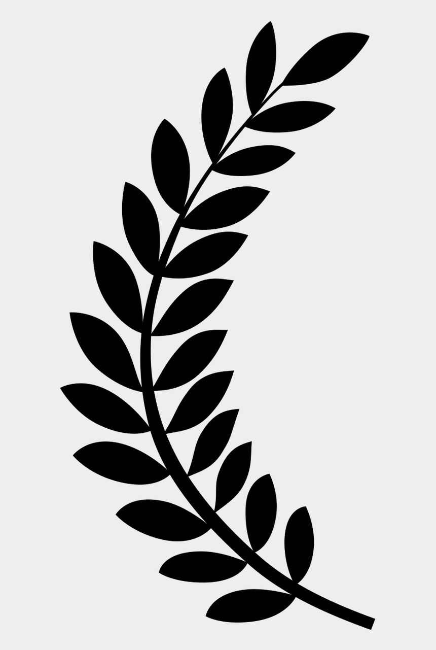 dicovery clipart, Cartoons - Directorial Discovery Award Rhode Island International - Film Festival Laurels Png