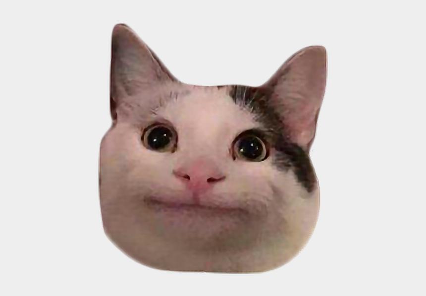 polite clipart, Cartoons - #meme #cat #polite #discord #freetoedit - Polite Cat Emoji