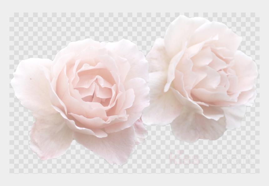 Flower Crown Clipart Transparent