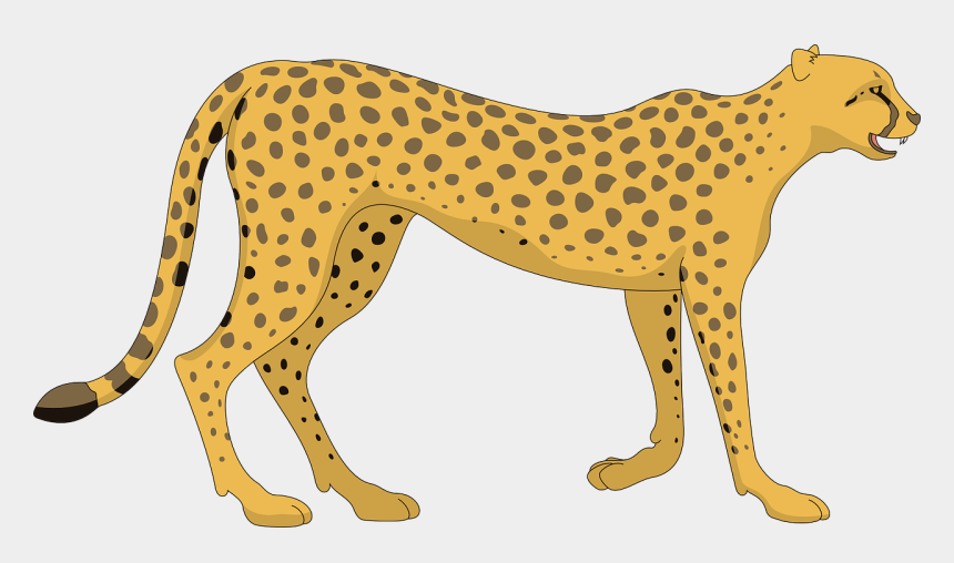 clipart of animals, Cartoons - Cat Cheetah Walking Animal Tail Spots Paws Spot - Cheetah Clipart