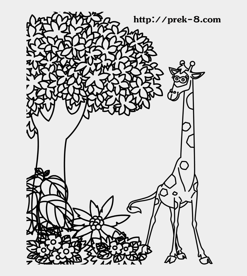 Jungle Animal Coloring Pages To Download And Print - Animals ...