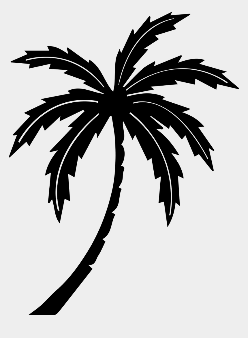 palm trees clipart free, Cartoons - Palm Tree Tree Tropic Free Picture - Palm Tree Beach Svg
