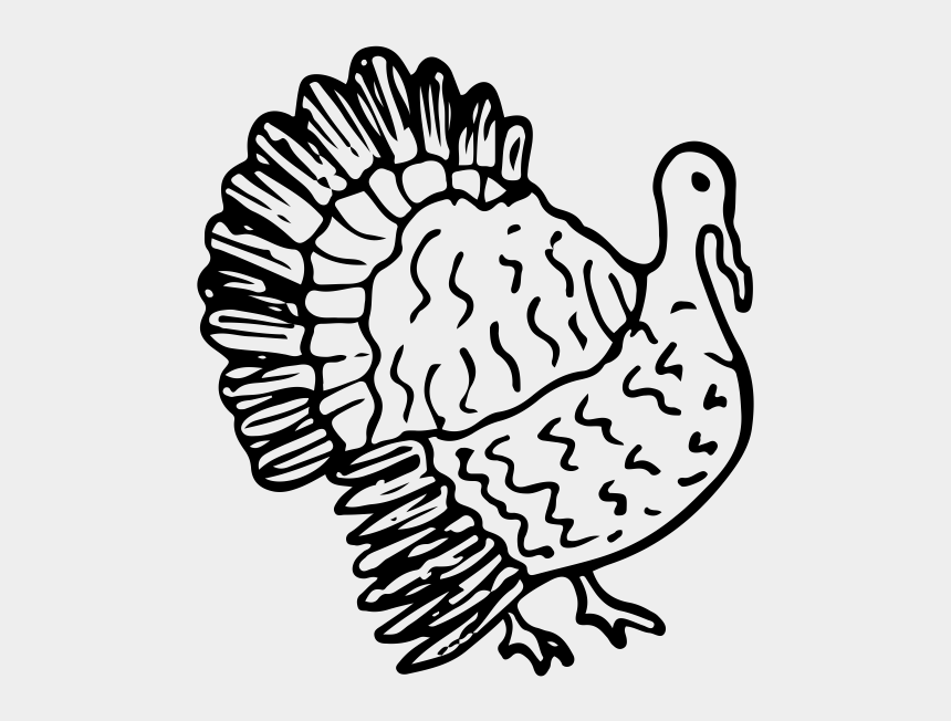 cooked turkey clipart black and white, Cartoons - Drawing Turkey Roasted Chicken