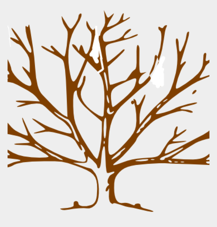 oak trees clipart, Cartoons - Bare Tree Clipart Food Clipart Hatenylo - Draw A Winter Tree