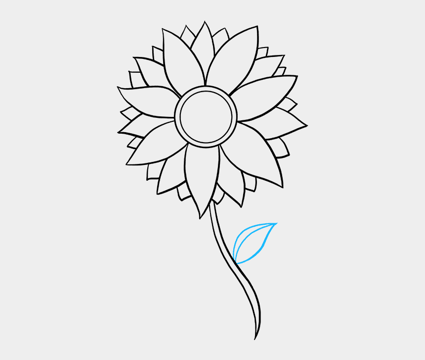 flower stem clipart black and white, Cartoons - Drawing Sunflowers Stem - Draw A Yellow Flower