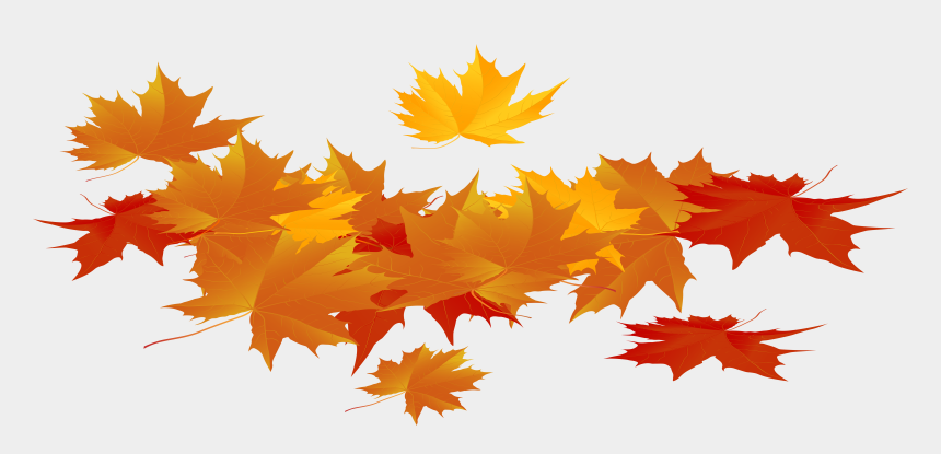 pile of fall leaves clipart, Cartoons - Thanksgiving Leaves Png - Autumn Leaves Png