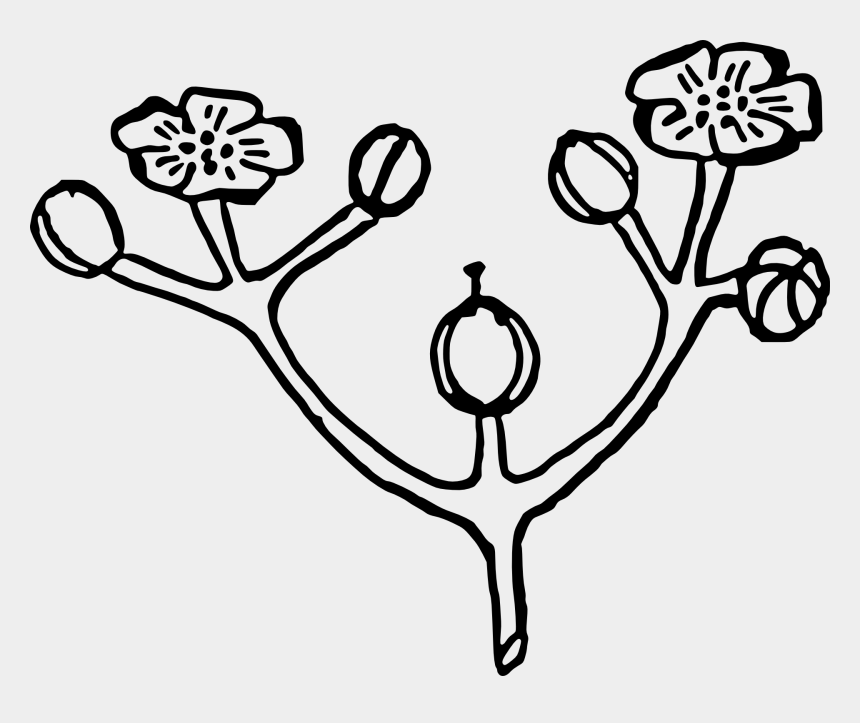 flower bouquet clipart black and white, Cartoons - Flower Bouquet Floral Design Rose Bud - Flower