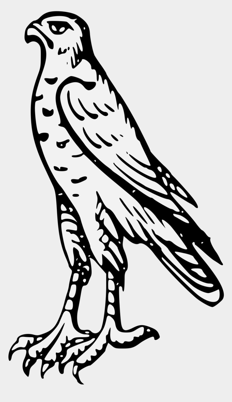 millennium falcon clipart, Cartoons - Drawn Falcon Svg - Bird Of Prey