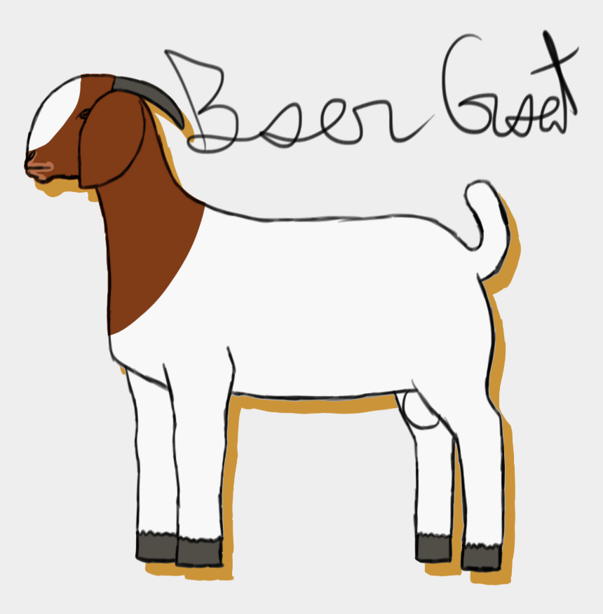 goat clip art, Cartoons - Image Result For Boer Goat Face Boer Goats, Large Animals, - Boer Goat Clipart