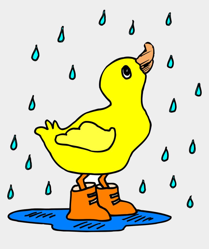 duck clip art, Cartoons - Wet Clipart Duck - Duck In The Rain Clipart