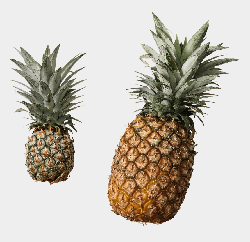 pineapple slice clipart, Cartoons - Fruits - Pineapple No Background Png
