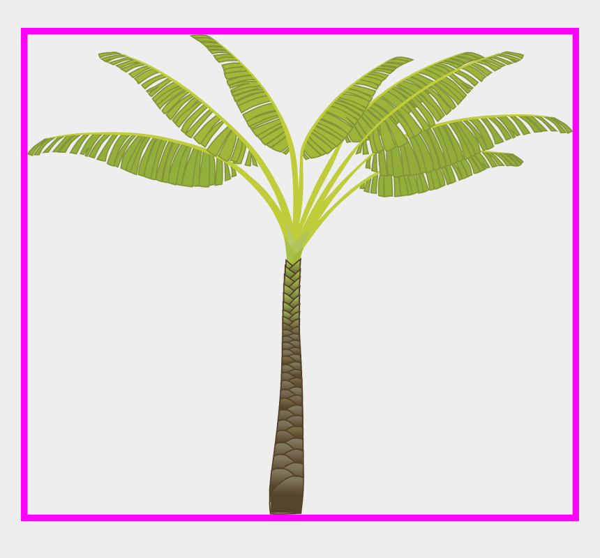 palm leaves clipart, Cartoons - Stunning Island Palm Tree Leaves Plant Jungle Pa Pict - Palm Tree T Clip Art