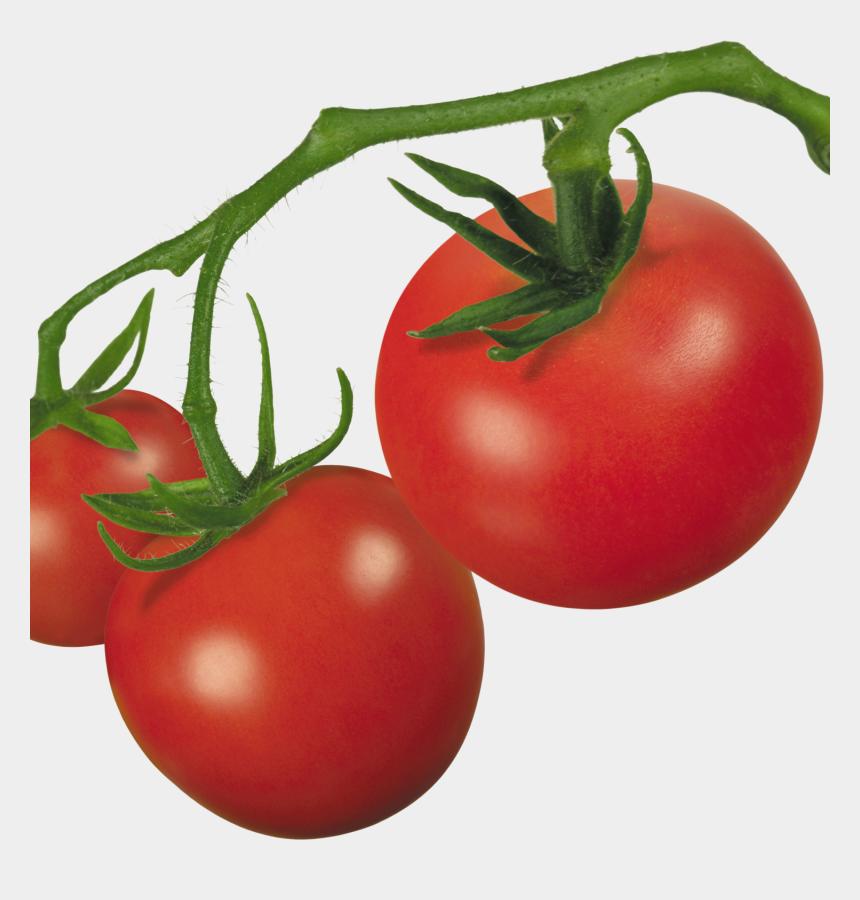 tomato slice clipart, Cartoons - Tomato Plant Clip Art - Transparent Background Tomato Png