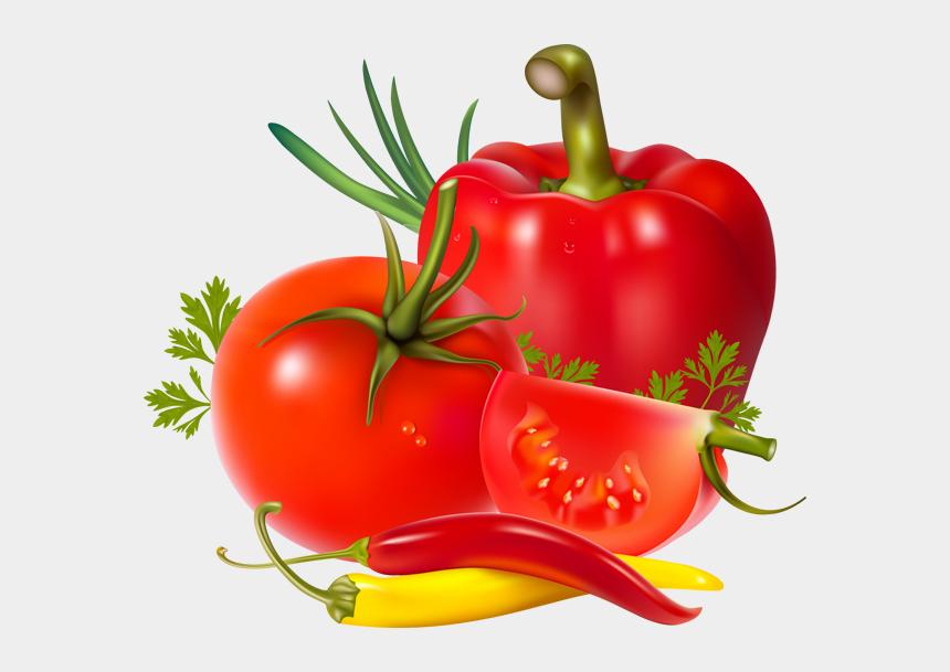 tomato slice clipart, Cartoons - Tomatoes Clipart Tomato Seed - Tomato And Pepper Clip Art