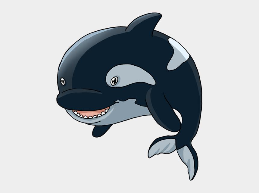Killer Whale - Cartoon Killer Whale Png, Cliparts & Cartoons ...