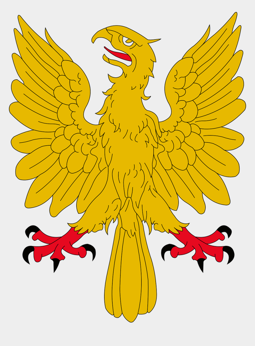 bald eagle clipart, Cartoons - Bald Eagle Bird Of Prey Golden Eagle - Ramsay Clan Coat Of Arms