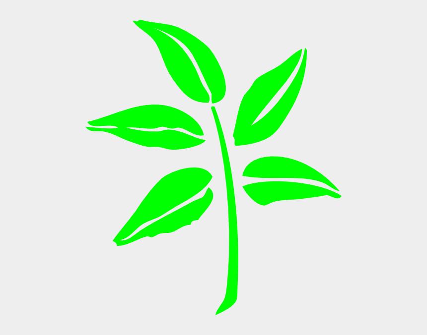 lettuce leaf clipart, Cartoons - Leaf Silhouette Clip Art At Clker Com Ⓒ - Leaf Silhouette