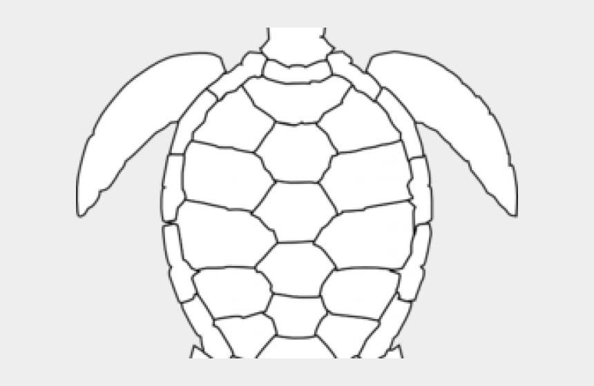 hawaiian sea turtle clipart, Cartoons - Sea Turtle Clipart Black And White - Turtle Cartoon Drawing Png
