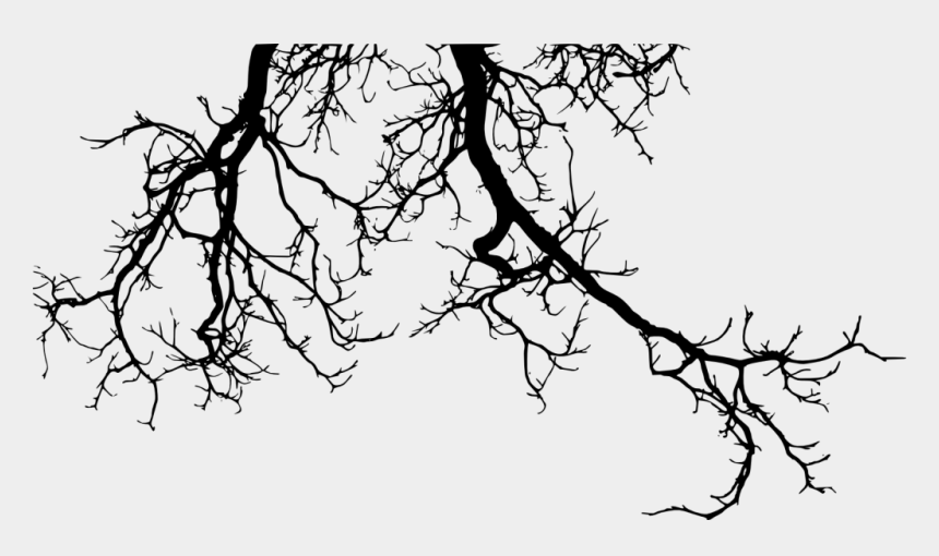 spooky tree clipart, Cartoons - Drawing Branches Creepy - Tree Branch Silhouette Png