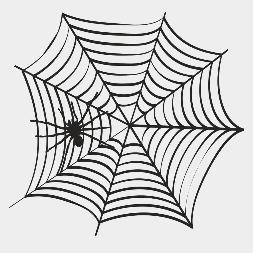 Svg Web Spiderweb Black Widow Spider Web Drawing Cliparts