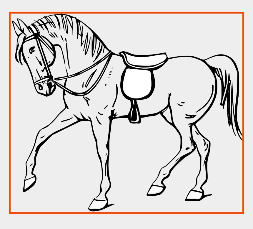 hippo clipart black and white, Cartoons - Hippo Clipart Black And White - Outline Pictures Of Horse