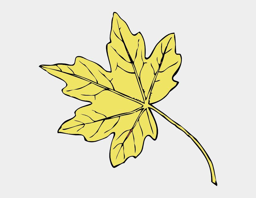 maple leaves clipart, Cartoons - Gold Maple Leaf Transparent