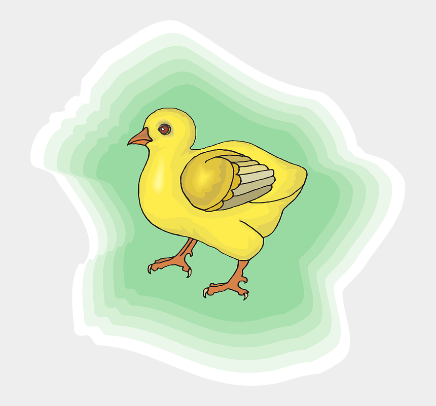 baby chick clipart, Cartoons - Baby Chick With Green Background - Duck