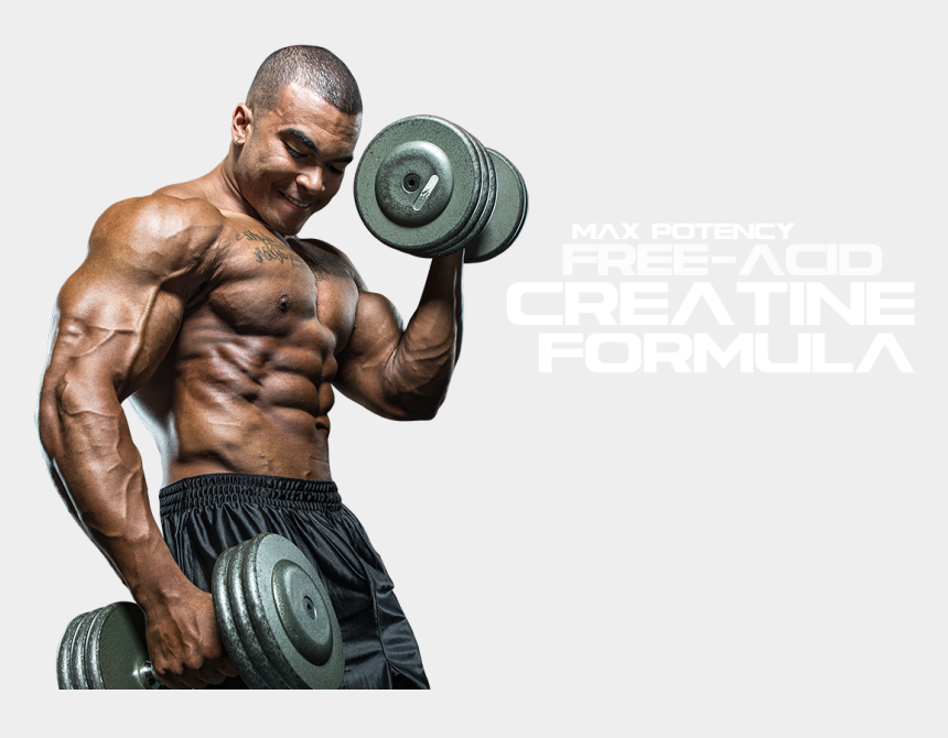 muscle arms clipart, Cartoons - Muscle Png Image Hd - Bodybuilder Workout Png
