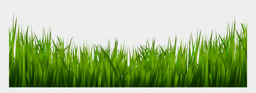 gardening tools clipart, Cartoons - Grass Png Images A Live Ornament Only Ⓒ - Grass And Plants Png