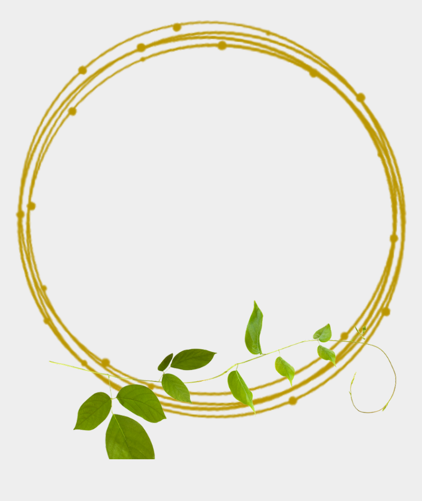 green border clipart, Cartoons - #golden #frame #frames #green #border #borders #leaves - Transparent Gold Lines Png