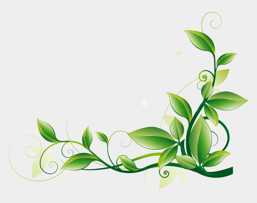 green border clipart, Cartoons - Vine Border Clipart - Green Flower Border Png