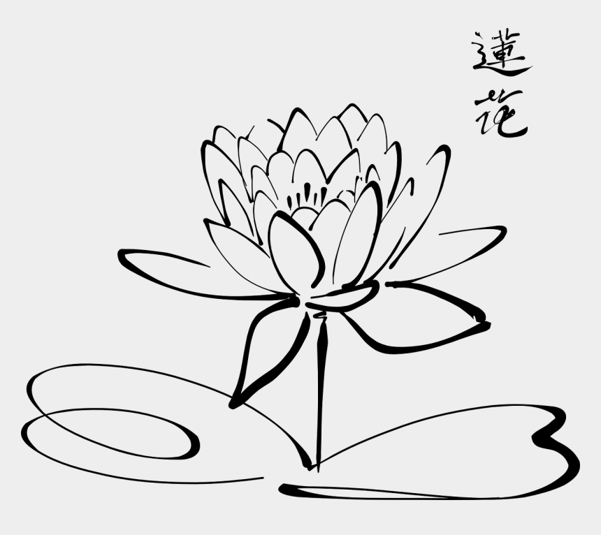 calligraphy clipart, Cartoons - Calligraphy Clip Art Download - Water Lily Colouring Page