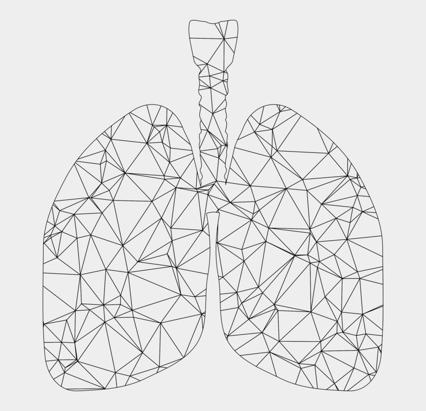respiratory system clipart, Cartoons - Low Poly Art Wireframe