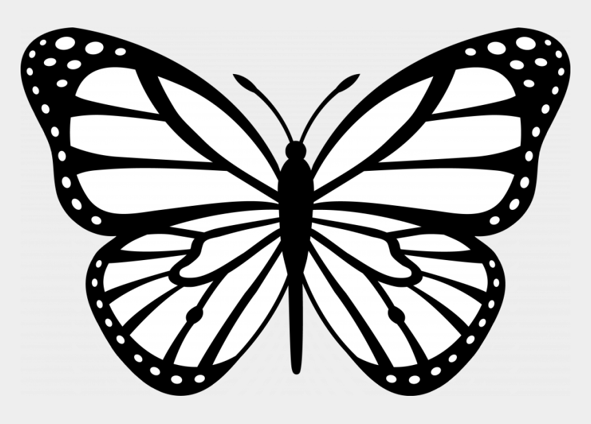 monarch clipart, Cartoons - Coloring Pictures Of Flowers And Butterflies Images - Butterfly Outline