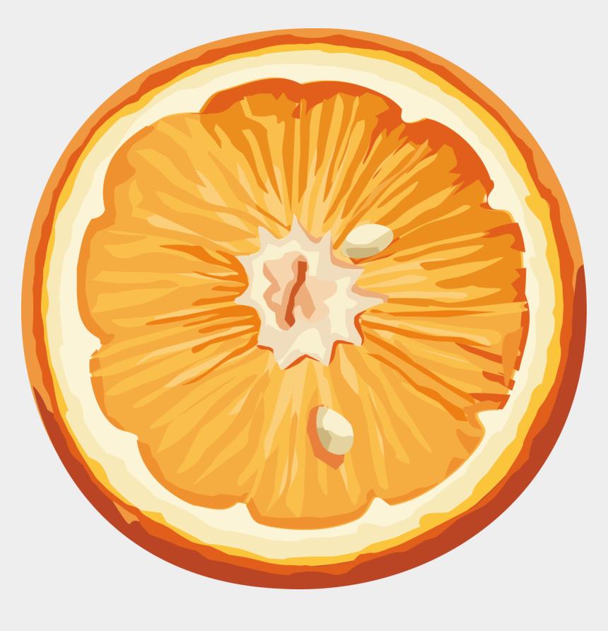citrus clipart, Cartoons - Orange Fruit, Orange Slices, Fruit Clipart, Cartoon - Laranja Fruta Laranja Icon Png