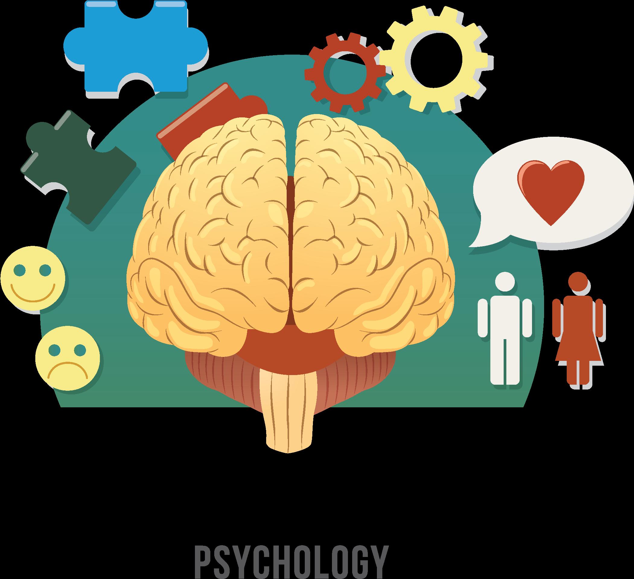 Transparent brain clipart - Psychology Clipart Human Brain - Clinical Psychologist