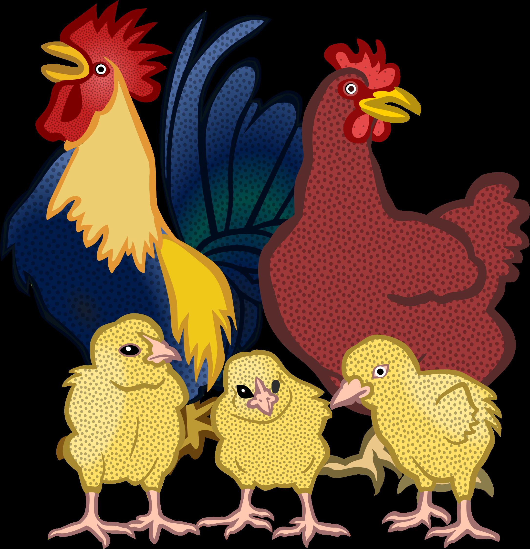 Transparent chicken clipart - Chickens Vector Clipart - Chickens Clipart